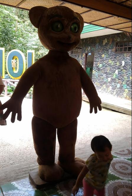 ターシャ動物園 ボホール島