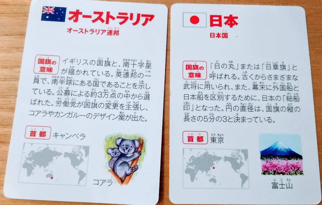 世界の国旗カルタ 国旗カード裏