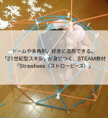 ドームや多角形、好きに造形できる。「21世紀型スキル」が身につく、STEAM教材「Strawbees(ストロービーズ)」